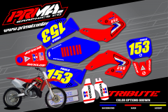 PRIMAL-X-MOTORSPORTS-PRIMAL-GRAPHICS-CO-SUZUKI-HONDA-CR125-CR250-DAIVD-BAILEY-TRIBUTE-CUSTOM-GRAPHICS-KIT-BIKELIFE-2000-2001-01